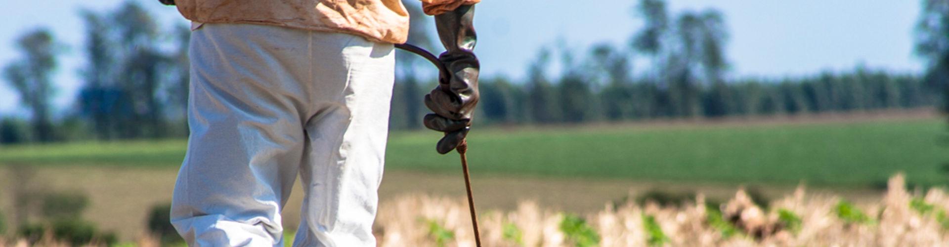 manejo integrado de pragas agrícolas